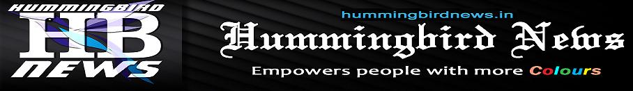 Hummingbird News
