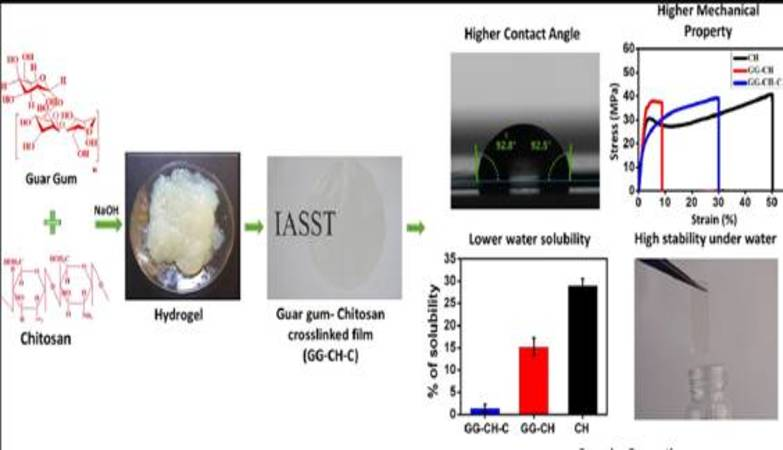 Indian scientists develop biodegradable polymer using guar gum and chitosan extracted from guar beans and shells of crab and shrimps