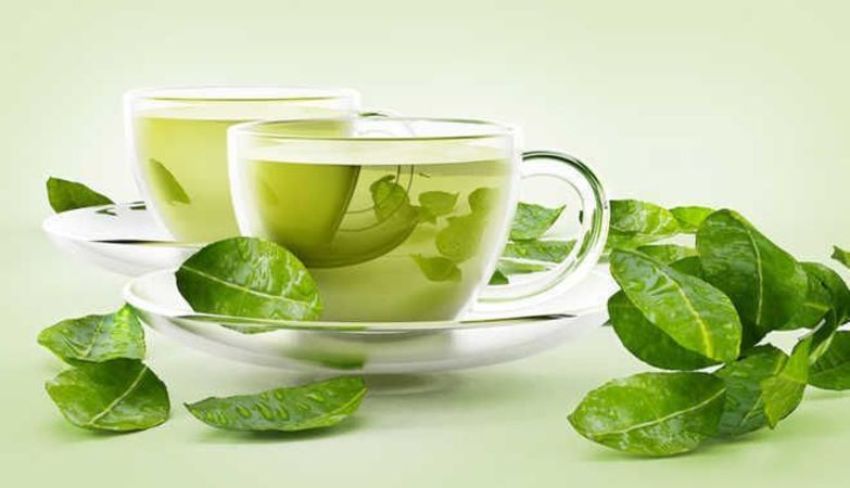 Compounds in green tea, turmeric, grapes, apple, cocoa, berries can treat Covid, diabetes and ageing: IISER Bhopal